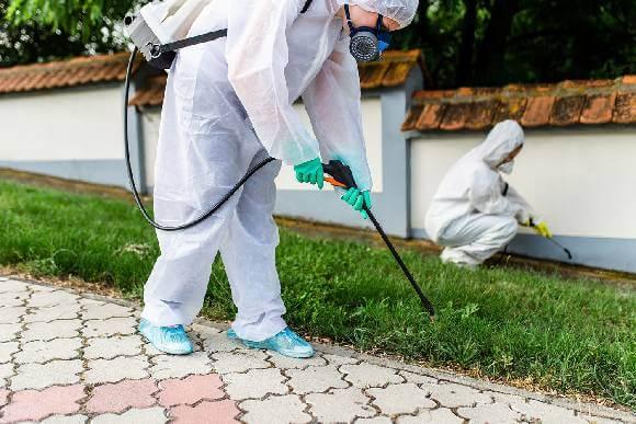 أنواع المبيدات المستخدمة شركة مكافحة حشرات بالرياض