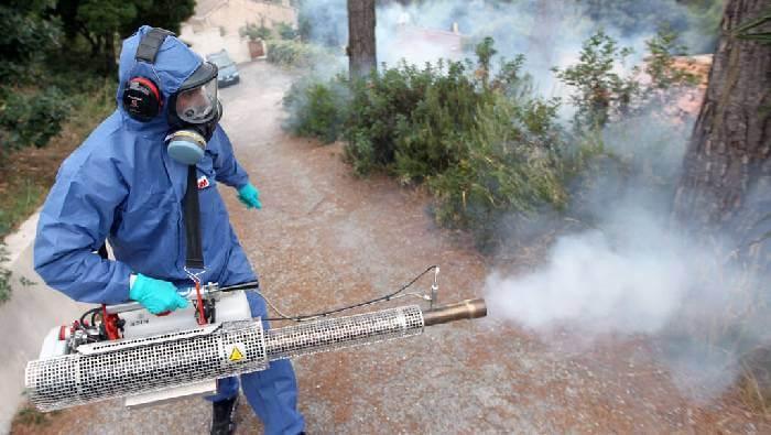 شركة رش مبيدات بعفيف